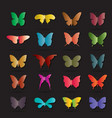 group of colorful butterfly on black background vector image vector image