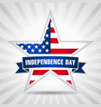 independence day usa star ribbon vector image vector image