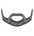 isolated detailed mustache vector image