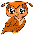 owl bird cartoon animal vector image