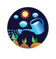 vegetable garden and watering vector image