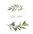 watercolor wreath olive branches and vector image vector image