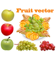 fruit chopped pear grape apple vector image