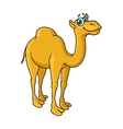Fun cartoon camel animal character vector image vector image