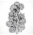 Graphically drawing black ink tree isolated on