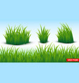 green grass horizontal texture seamless background vector image
