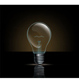 incandescent lamp on a dark background vector image vector image