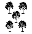 maple trees and grass silhouette vector image vector image
