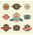 set retro vintage badges and labels pin badge vector image