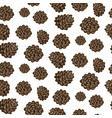 fir cones seamless white background pattern vector image
