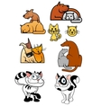 Set of pet best friends icons vector image