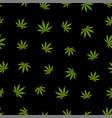 cannabis seamless pattern marijuana leaf green vector image
