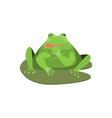 cartoon cute winking green frog character vector image vector image