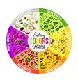 color diet white green yellow orange red purple vector image