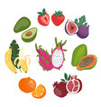 cute flat set whole and sliced fresh vector image