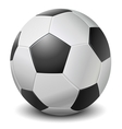 Detailed black fringe football ball vector image