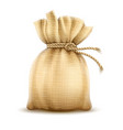 full sack tied with rope knot vector image