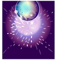 Shiny disco ball on nightclub vector image