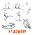 sketched elements of Halloween celebration vector image vector image