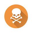 Skull symbol vector image
