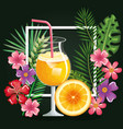 tropical cocktail with orange fruit and decoration vector image