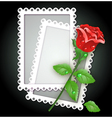 White frame and rose vector image vector image