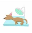 Dog checkup at vet icon cartoon style vector image