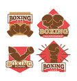 boxing club or boxer school championship vector image vector image