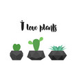 i love plants graphic for t-shirt print vector image