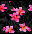 tropical coral flowers and leaves vector image vector image