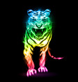 fire tiger in spectrum colors isolated on black vector image vector image