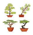 set of colorful bonsai trees in pots vector image