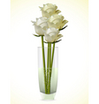 white and ivory roses in a vase vector image vector image