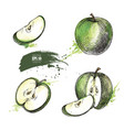 apple hand drawn set vector image vector image