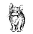 cat with mask hand drawn vector image vector image