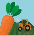 farm fresh vegetables carrot product vector image