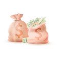 pair of money bags banking sacks full cash dollar vector image vector image