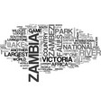 what makes zambia safari unique text word cloud vector image vector image