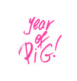 year of pig xmas brush lettering vector image