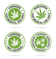 grunge rubber of marijuana set in green vector image