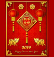 chinese new year 2019 with lantern and golden pig vector image vector image