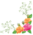 Pink and yellow roses vector image