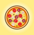 pizza with mushrooms salami tomato and sausage vector image