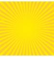 Sun sunburst texture vector image vector image