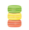 tasty macarons vector image vector image