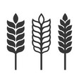 wheat ear spica icon set on white background vector image