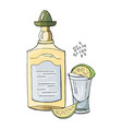a bottle of tequila and a glass of lime isolated vector image