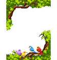 Birds on the branch of a tree vector image vector image