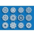 Beautiful 3d snowflakes set vector image vector image