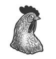 chicken head sketch vector image vector image
